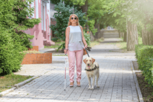 picture of a blind woman walking on a sidewalk with a cane and guide dog